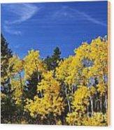 Fall Aspens Wood Print