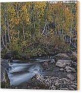 Fall At Bishop Creek Wood Print
