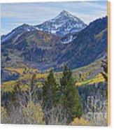 Fall At Cascade Peak And Sundance From Alpine Loop  Wood Print
