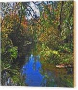 Fall At Kelly Park Wood Print