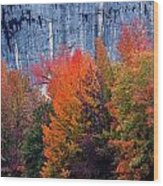 Fall At Steele Creek Wood Print