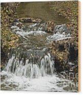 Fall At The Lower Falls Wood Print