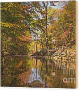 Fall At Valley Creek  Wood Print