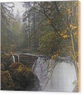 Fall At Whatcom Falls Wood Print