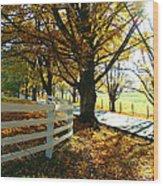 Fall Back Roads Wood Print