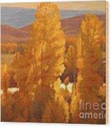 Fall Backlight Wood Print by Doyle Shaw