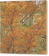 Fall Beauty Wood Print