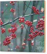 Fall Berries Wood Print
