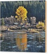Fall Brilliance On Warm River Wood Print