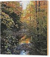 Fall Brook Wood Print