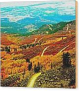 Fall Carpet At Lands End Wood Print