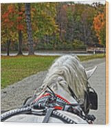 Fall Carriage Ride Wood Print