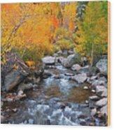 Fall Color Along Bishop Creek, Inyo Wood Print