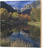 Fall Color And Reflection Below Middle Palisades Glacier California Wood Print