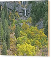 Fall Color And Waterfalls In Provo Canyon Utah Wood Print
