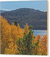 Fall Color At Caples Lake Wood Print