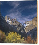 Fall Color Below Middle Palisades Glacier Eastern Sierras California Wood Print