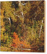 Fall Color Creekside Wood Print