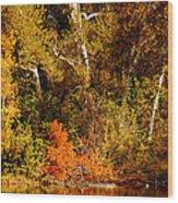 Fall Color Creekside Wood Print