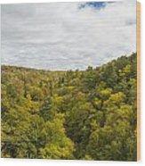 Fall Color Hills Mi 1 Wood Print