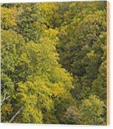 Fall Color Hills Mi 3 Wood Print