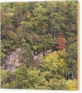Fall Color In Little River Canyon Wood Print