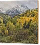 Fall Color In The Rockies Near Ouray Dsc07913 Wood Print
