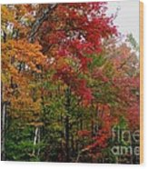Fall Color Palette Wood Print