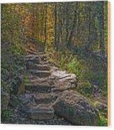 West Fork At Oak Creek Wood Print