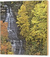 Fall Color Surrounds Chapel Falls On The Michigan Upper Peninsula Wood Print