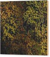 Fall Color Trees V7 Pano Wood Print