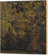Fall Color Trees V9 Pano Wood Print
