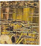 Fall Colored Pond Wood Print