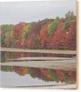 Fall Colors - 3 Wood Print