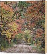Fall Colors - 2 Wood Print