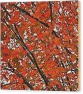 Fall Colors 2014-10 Wood Print