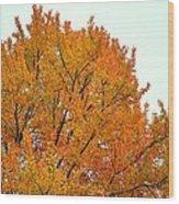 Fall Colors 2014-11 Wood Print