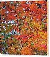 Fall Colors 2014-4 Wood Print