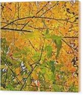 Fall Colors 2014-8 Wood Print