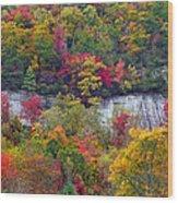 Fall Colors Along Tanasee Road Wood Print
