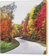 Fall Colors Along The Blueridge Parkway Wood Print