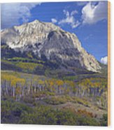 Fall Colors At Gunnison National Forest Wood Print