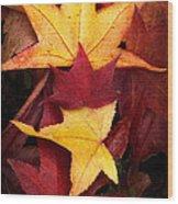 Fall Colors Wood Print by Bobbi Feasel