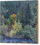 Fall Colors By The Spokane River Wood Print