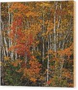 Fall Colors Greeting Card Wood Print