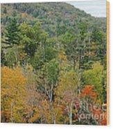 Fall Colors II Wood Print