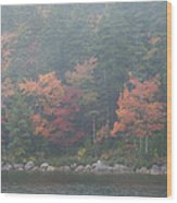 Fall Colors In Acadia National Park Maine Img 6483 Wood Print