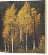 Fall Colors In Washington Cascades Wood Print