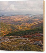 Fall Colors Of Acadia 6656 Wood Print