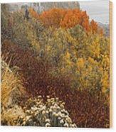 Fall Colors On June Lake Loop Wood Print